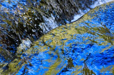 Stepstone Falls Abstract