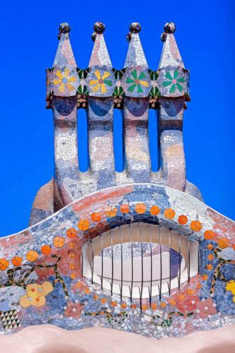 Batllo House Detail - Antoni Gaudi -David Cardelus