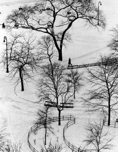 Andre Kertesz - Washington Park