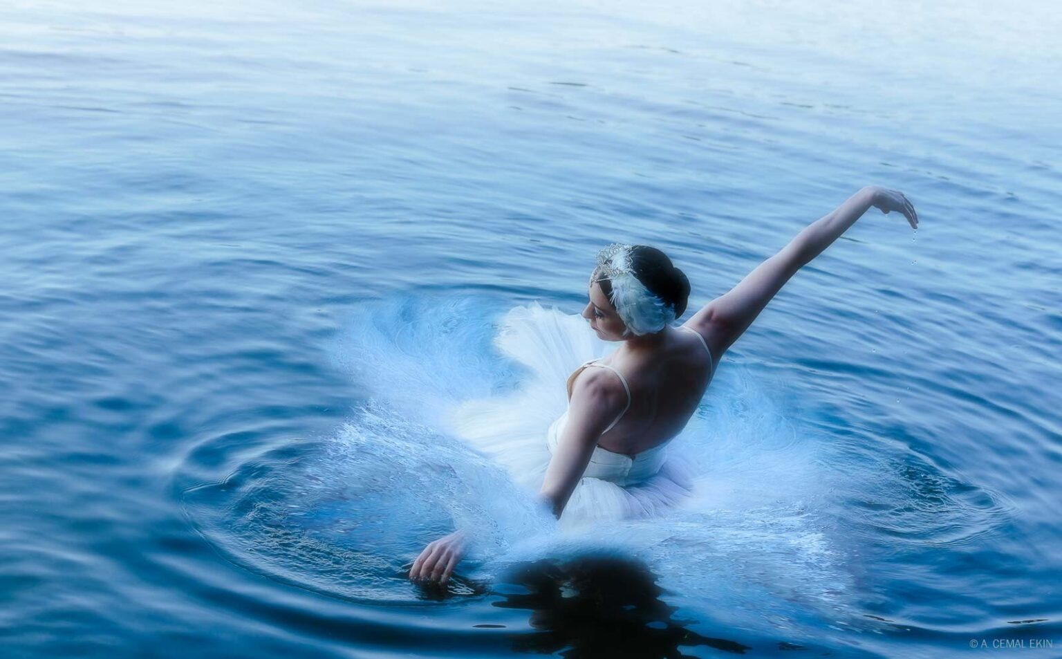 Vilia Putrius, Odette, Swan Lake (Luster or Gloss)
