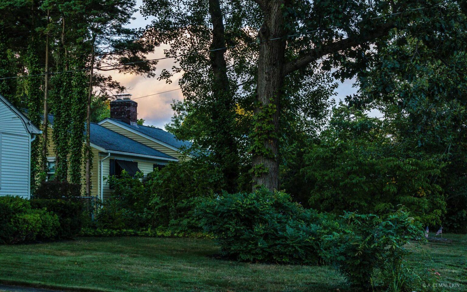 Neighborhood / Kept Light Photography