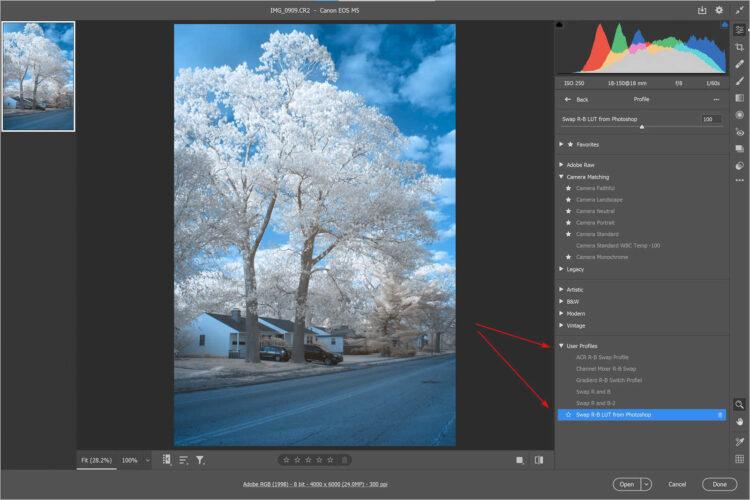 Use LUT Profile in Adobe Camera Raw