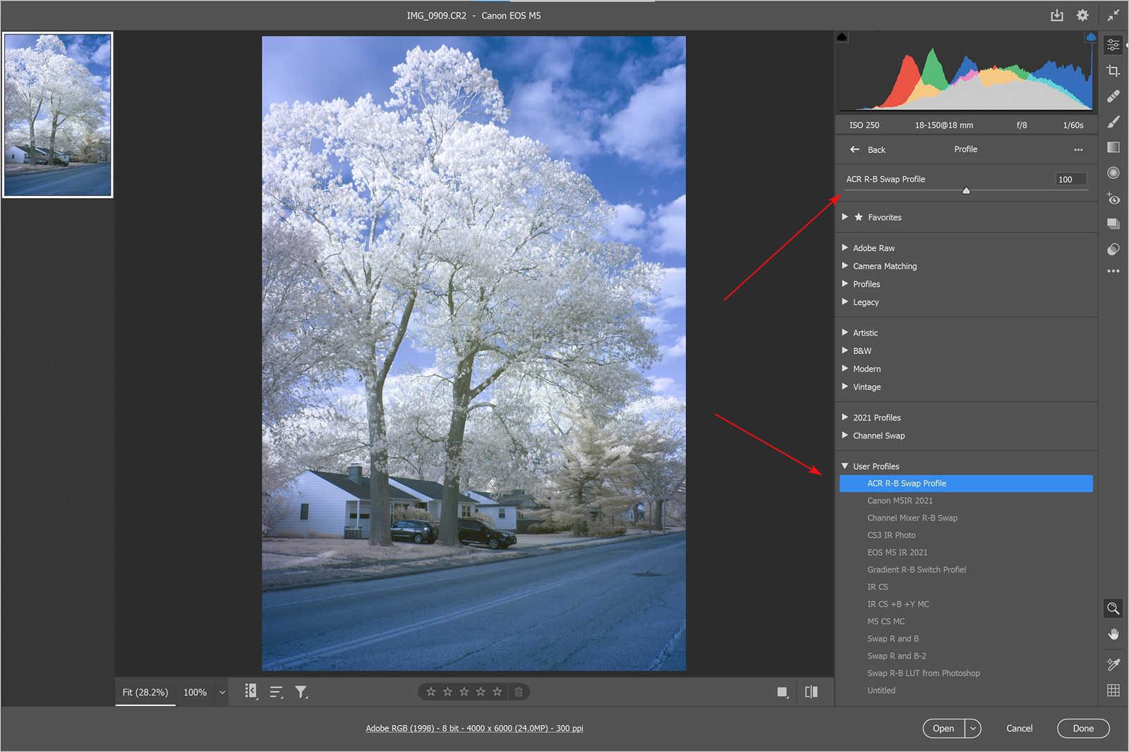 Use the camera profile in ACR