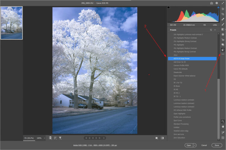 Use Preset in ACR