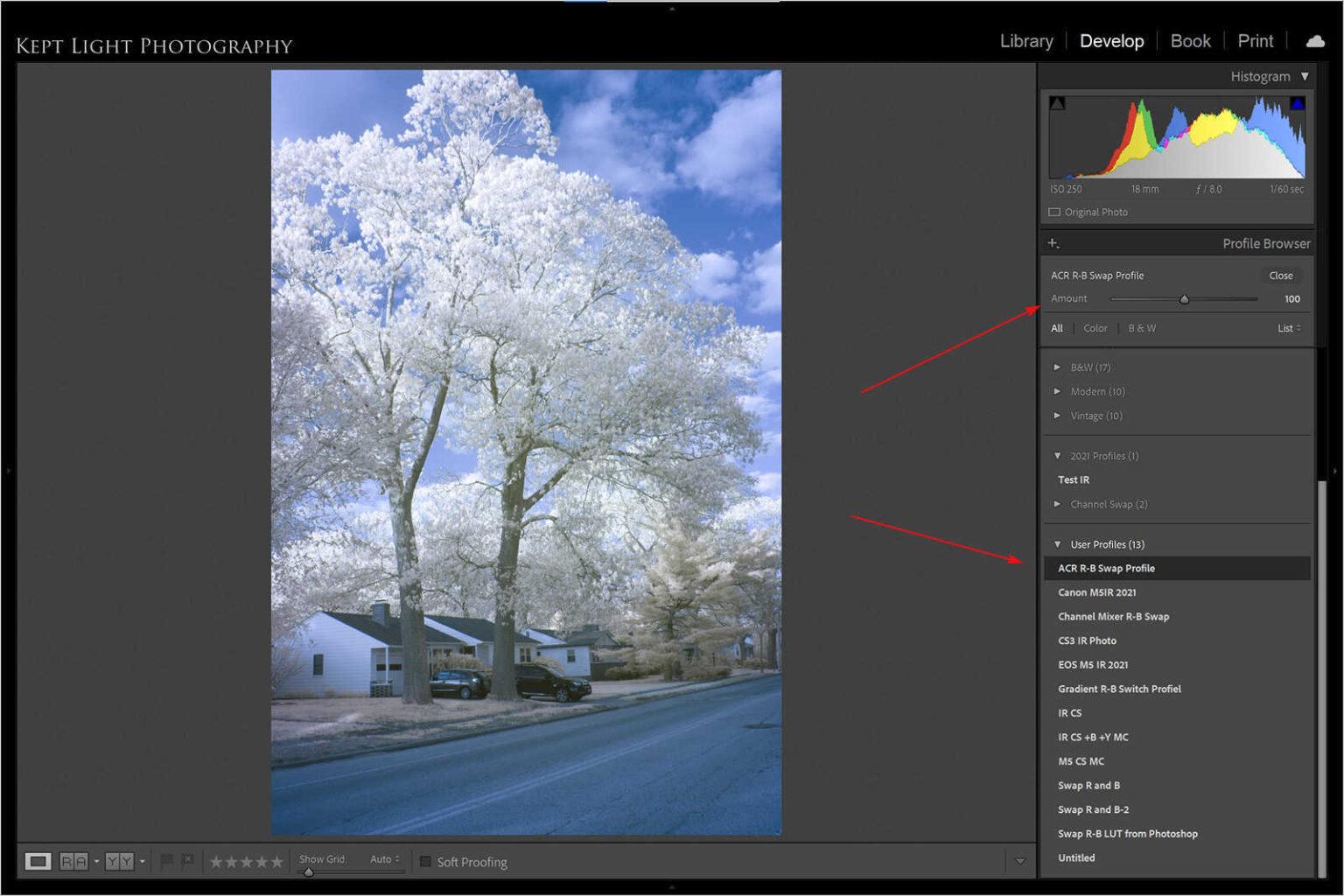 Use the camera profile in Lightroom