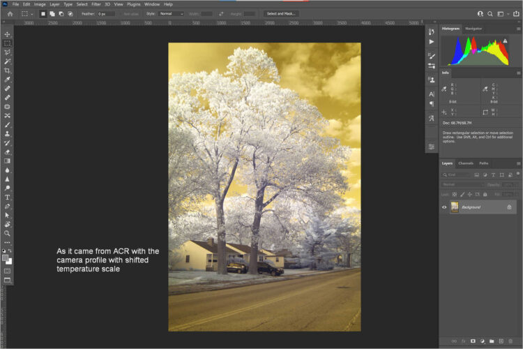 Opened in Photoshop via ACR, new profile applied
