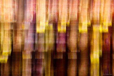 Camera Movement Abstract